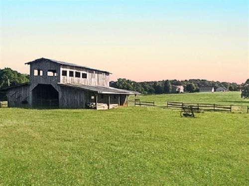 6.76 Acres With 3 Stall Horse Barn : Madison : Morgan County : Georgia