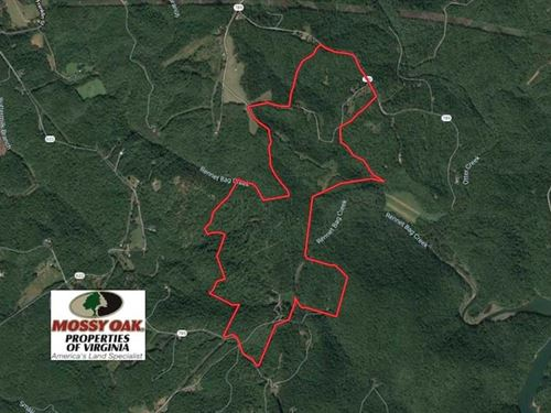 373 Acres of Residential Hunting : Ferrum : Franklin County : Virginia