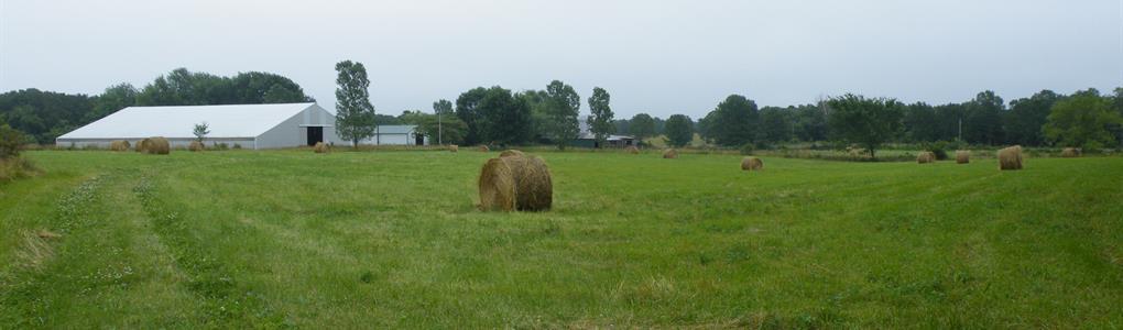 Beautiful, Productive Farm : Licking : Texas County : Missouri