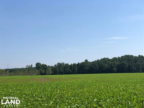 Houlka Mississippi Farmland : Houlka : Calhoun County : Mississippi