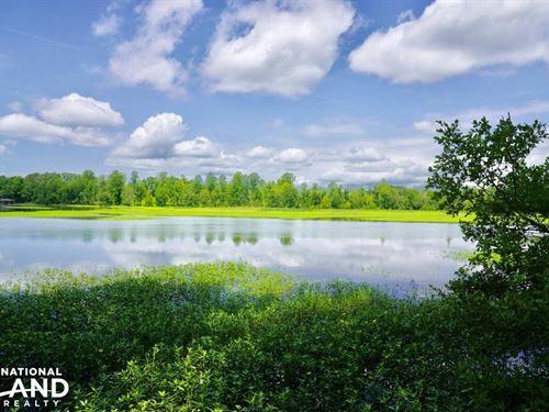 Cedar Creek Farms : Sylacauga : Talladega County : Alabama