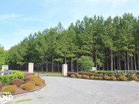Wee Tee Farms : Suttons : Williamsburg County : South Carolina