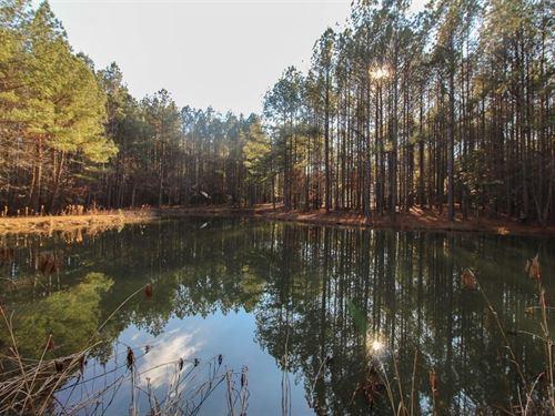 Land in Phenix, Virginia : Phenix : Charlotte County : Virginia