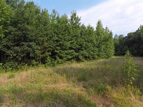 136 Acres In Reagan TN : Reagan : Henderson County : Texas
