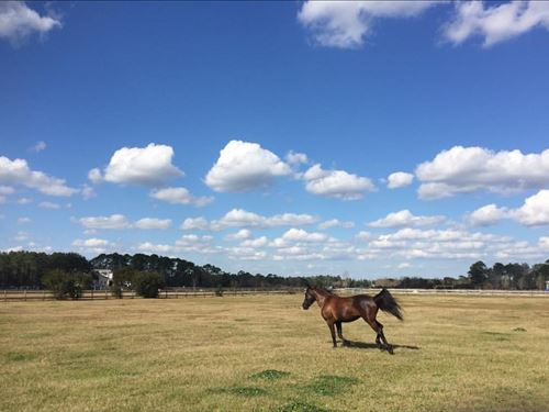 Home Is Where The Horse Is : Ponte Vedra : Saint Johns County : Florida