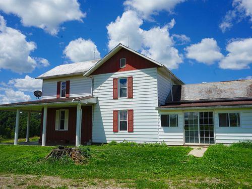 Mollies Rock Rd, 15 Acres : Dresden : Muskingum County : Ohio