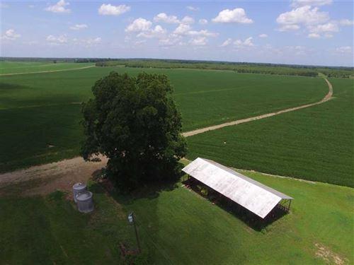 1000 Acres in Tensas Parish : Saint Joseph : Tensas Parish : Louisiana