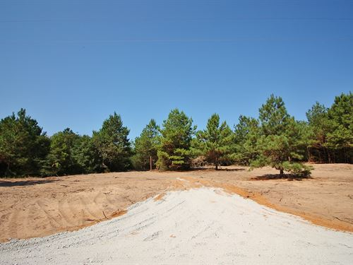 Unrestricted Wooded Land Leon CO : Centerville : Leon County : Texas