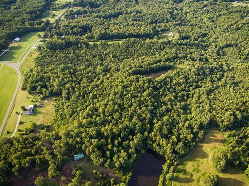 Must See Acreage : Madison : Rockingham County : North Carolina