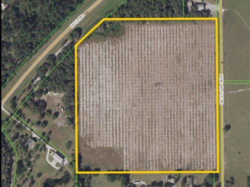 Prime Development Land : Saint Cloud : Osceola County : Florida