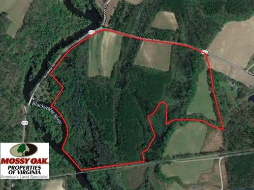 127 Acres of Farm And Hunting Land : Carrsville : Isle Of Wight County : Virginia