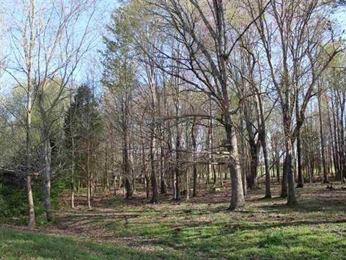6.63 Acre Lot Between Smiths Grove : Glasgow : Barren County : Kentucky