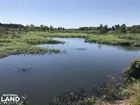 60 Acres Duck & Deer Hunting on : Wheatley : Saint Francis County : Arkansas