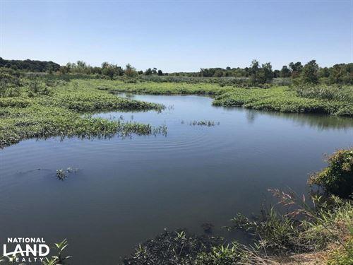 60 Acres Duck & Deer Hunting : Wheatley : Saint Francis County : Arkansas