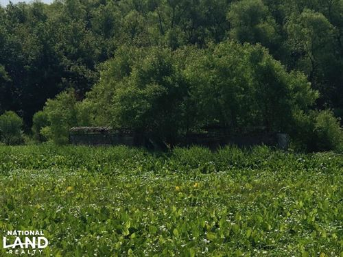 112 Acre Duck Hunting Farm : Clarendon : Monroe County : Arkansas