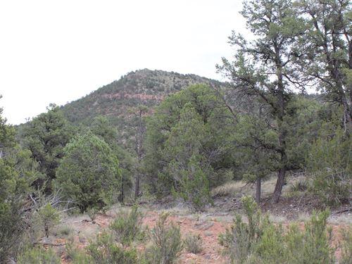 Private Rural Mountain Land Arizona : Seligman : Yavapai County : Arizona