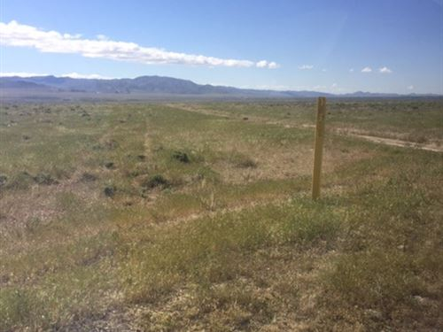 1,280 Acres In Nv, Auction : Lovelock : Pershing County : Nevada