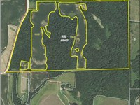 Fantastic Hunting Farm : El Dara : Pike County : Illinois