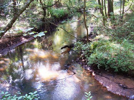 Cohelee Creek East : Hilton : Early County : Georgia