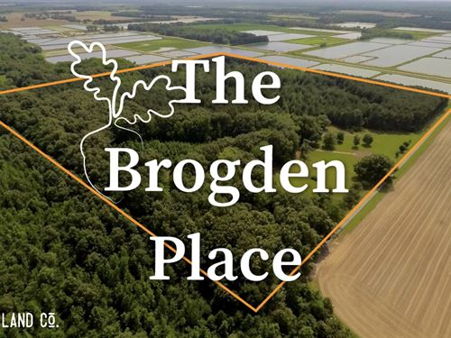 The Brogdon Place : McCrory : Woodruff County : Arkansas