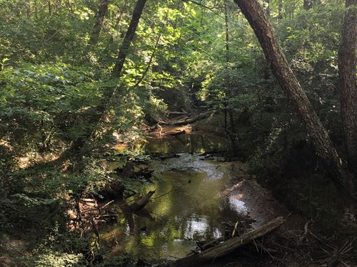 Creel Tract : Marion : Perry County : Alabama