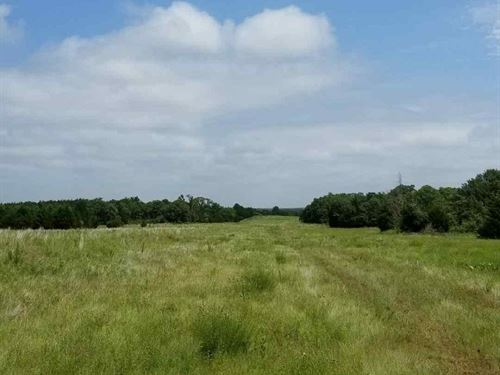 160 Acres in Yale, OK : Yale : Payne County : Oklahoma
