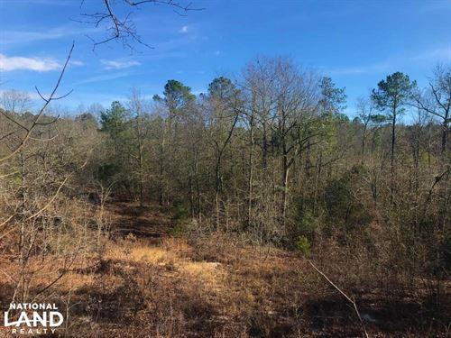 Goodsprings Recreational Homesite : Aiken : South Carolina
