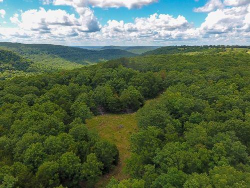 Kingston AR Hunting Land For Sale : Kingston : Arkansas County : Arkansas