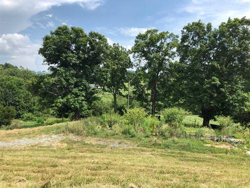 12.73 Acre Farm in Hamblen Co, TN : Russellville : Hamblen County : Tennessee