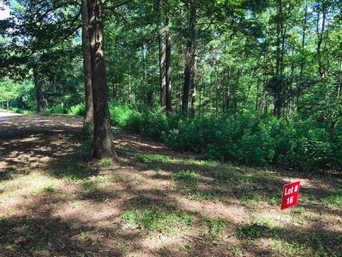 Recreational Farm Land Auction : Ferguson : Wilkes County : North Carolina