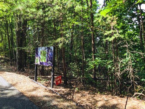 Wooded Land For Sale in Ferguson NC : Ferguson : Wilkes County : North Carolina