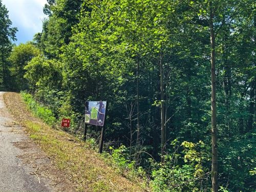 Hunting Recreational Home Site : Ferguson : Wilkes County : North Carolina