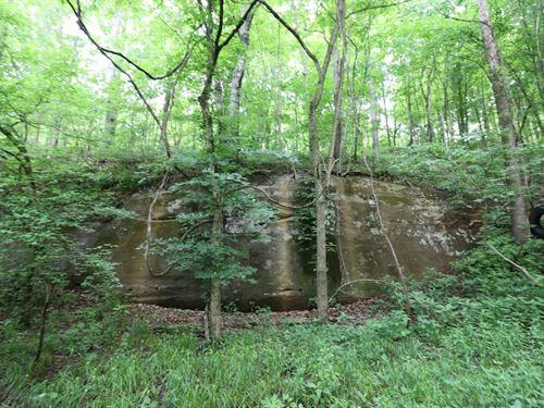 Keystone Rd, 56 Acres : Vinton : Gallia County : Ohio