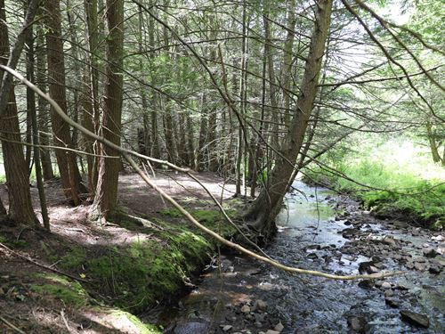 Catskills Land With Creek And Views : Liberty : Sullivan County : New York