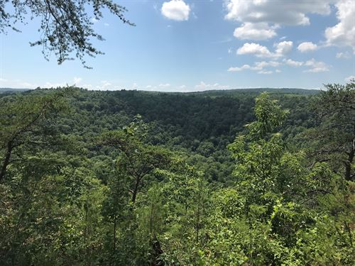 61+/- Acres Unrestricted With Views : Tracy City : Marion County : Tennessee