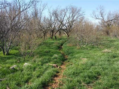 170 Acres Ready For Your Country : Westover : Baylor County : Texas