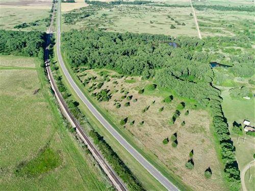 58 Acres of Timber, Water, And : Pratt : Kansas