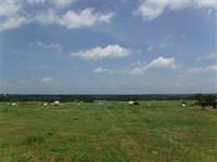 122 Acres of Prime Farmland, Ranch : Guy : Faulkner County : Arkansas