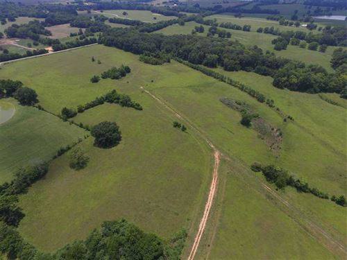 110 Acres of Open Land $2400/Ac : Hope Hull : Lowndes County : Alabama