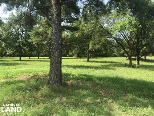 Houston Pasture, Hunting, Home Site : Houston : Chickasaw County : Mississippi