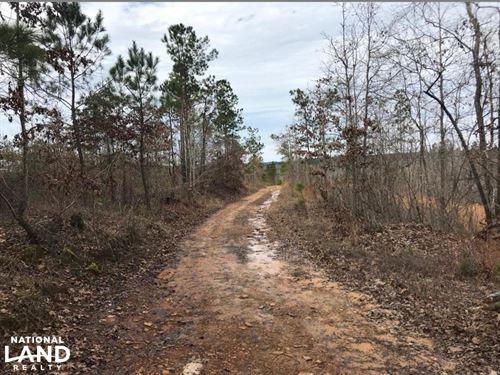 Brown Road Hunting Tract : Vernon : Lamar County : Alabama