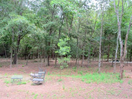 18 + East Texas Acres, Camp County : Pittsburg : Camp County : Texas