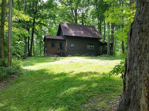 Beautiful Cabin Acreage McArthur : McArthur : Vinton County : Ohio