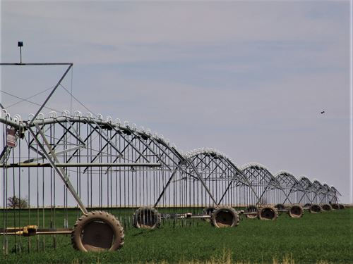 Irrigated Farm In Southeastern Nm : Hope : Eddy County : New Mexico