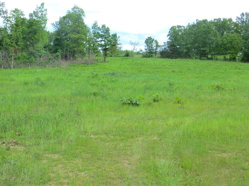 Acreage, Farm, Homesite For Sale : Thayer : Oregon County : Missouri
