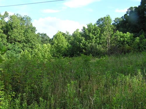 Mountain Land Unrestricted : Dunlap : Sequatchie County : Tennessee