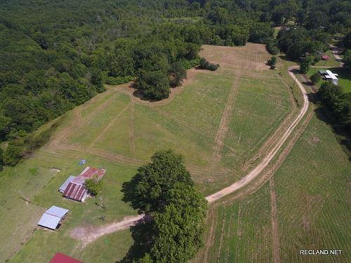 40 Ac, Home And Open Pasture : Lillie : Union Parish : Louisiana