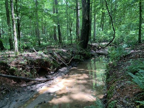 Middlebrooks Tract : Watkinsville : Oconee County : Georgia