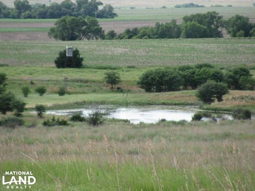 Palco Plenty : Palco : Rooks County : Kansas