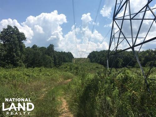 Hanceville Timber & Hunting Tract : Hanceville : Cullman County : Alabama